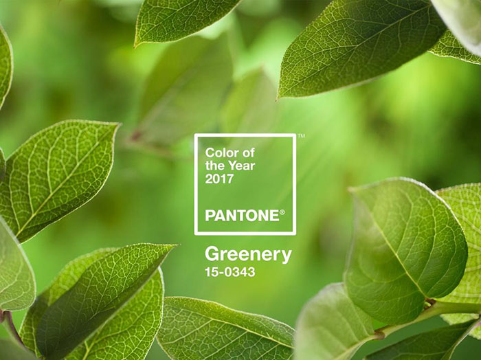 PANTONE-az-ev-szin-2017-levelzold