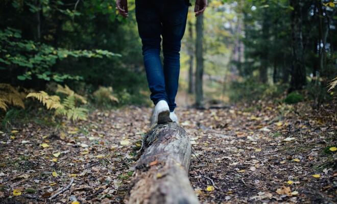 wood-691629_1280